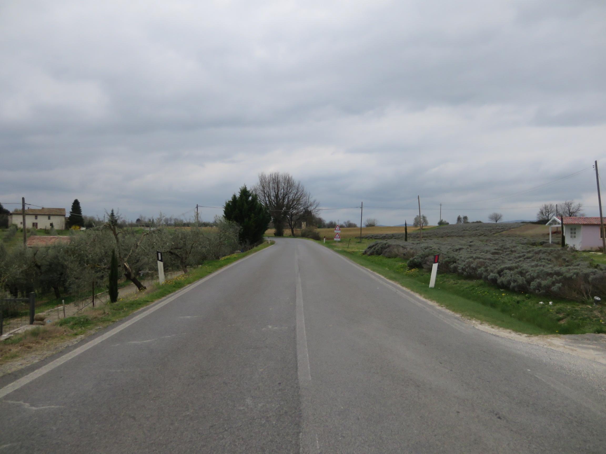 レストランの前の道