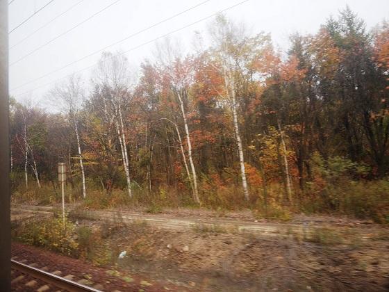 ライラック・カムイからの車窓。札幌を抜けるとすぐに紅葉