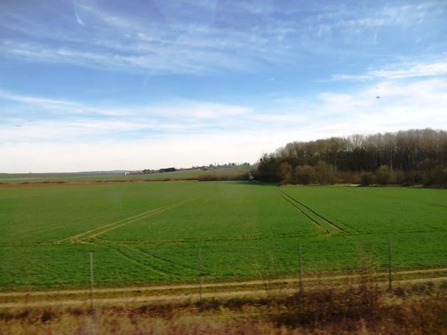 フランス郊外の畑