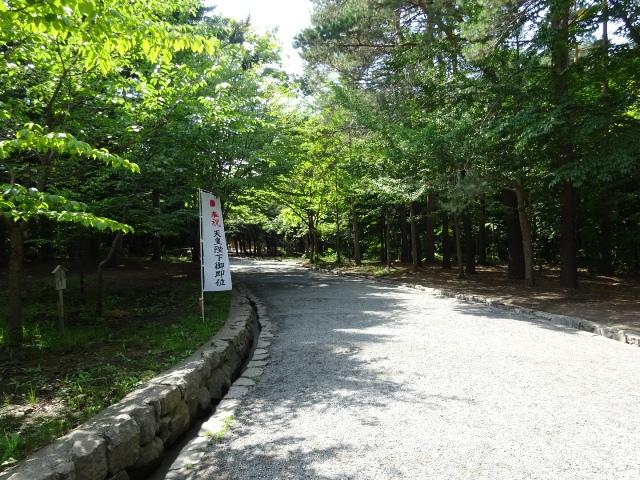 北海道神宮へ続く参道