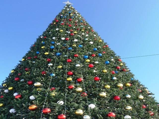 christmas tree in vladivostok at central park