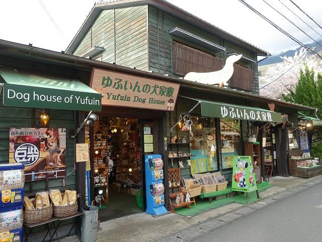 Dog House of Yufuin
